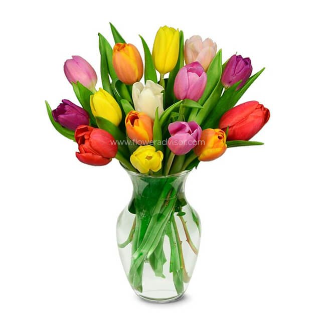 Summer Tulip Bouquet - 15 Stems - Birthday