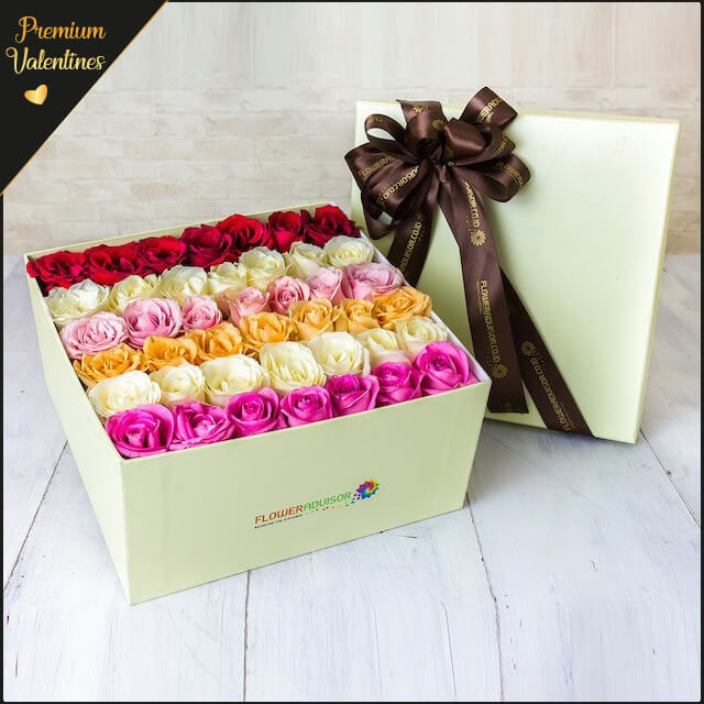 Premium VDAY 5 Shades Of Roses - Valentine's Day