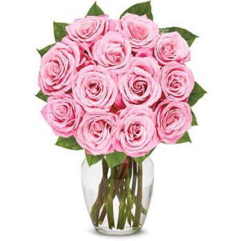 Bouquet of One Dozen Light Pink Roses - Teachers Day