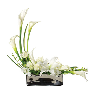 Deluxe Lily Tranquility - Premium Blooms