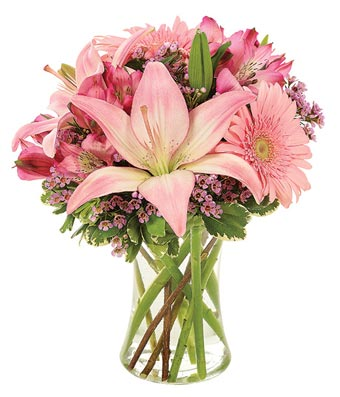 Pink Charm Bouquet - New Borns