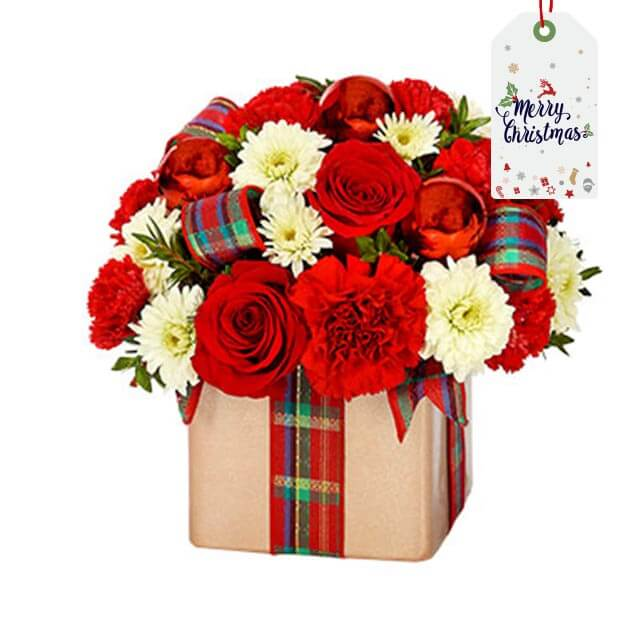 Xmas - Holiday Flower Gift Present - Christmas