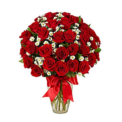 3 Dozen Red Roses - Valentine's Day